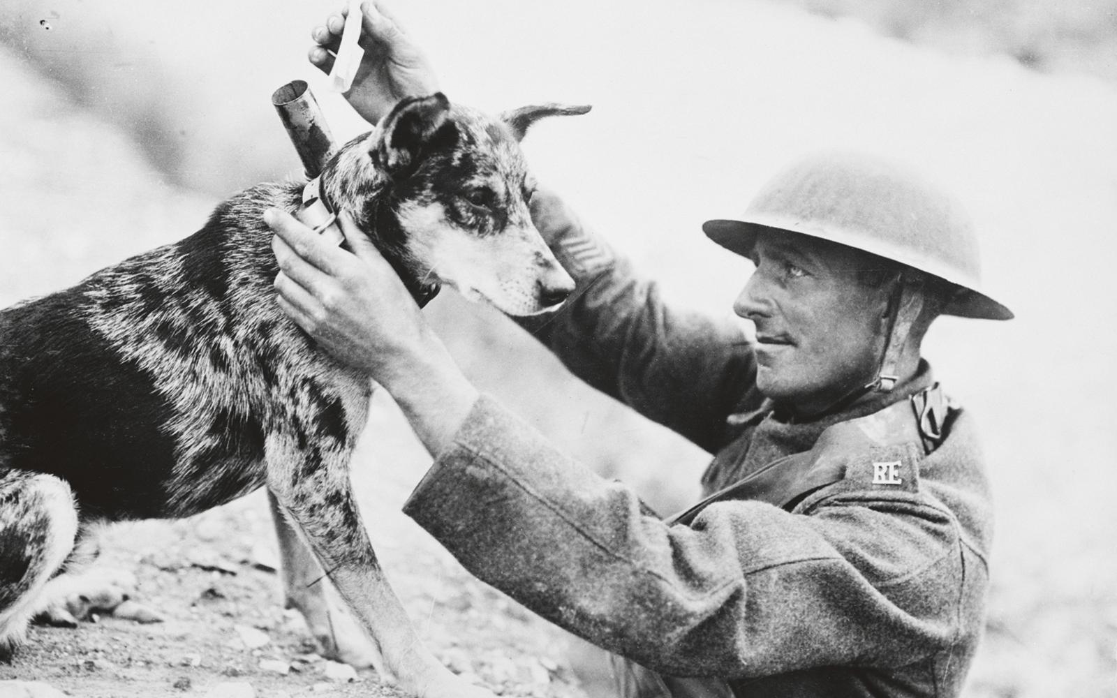 vilken roll spelade enskilda aktörer i första världskriget