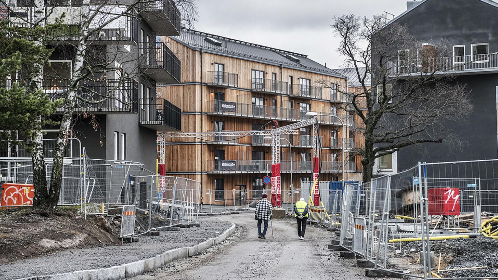 Rodgrona vill bygga billiga bostader for ungdomar
