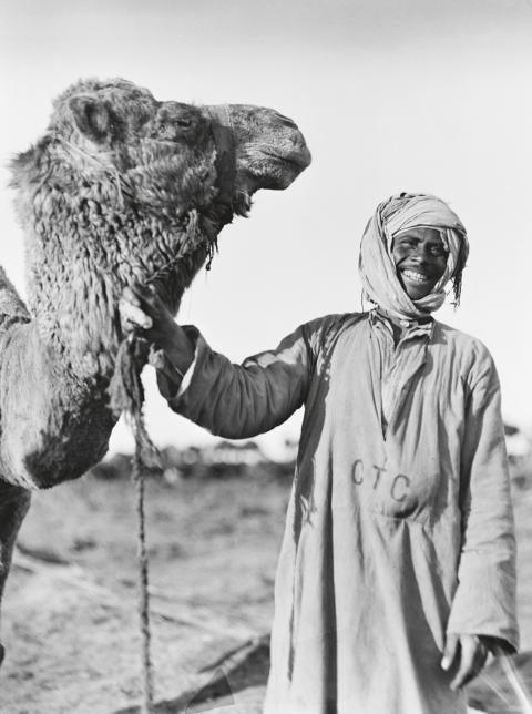 Många ömmade för sina djur och visade det tydligt.   Bild: Australian War Memorial