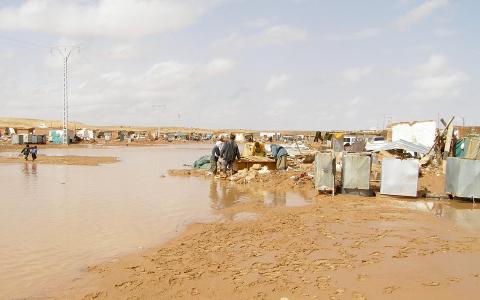 """""""160 000 västsaharier sitter i flyktingläger i Algeriet sedan 1975"""", skriver Lena Thunberg.  Bild: Sahara press service/TT"""
