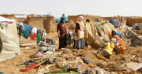 Bild: Sahara Press Service/TT