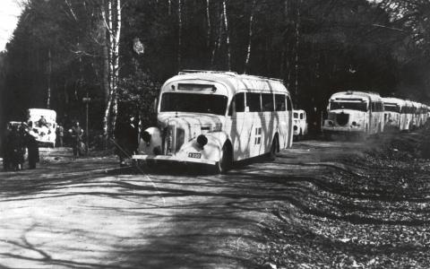 """""""I dag i Sverige hyllar vi de vita bussarna som då förde folk till säkerhet samtidigt som allt fler pratar om nutida flyktingar i ekonomiska termer och som volymer"""", skriver Isabella Andersson, Karl-Johan Johansson och Sigrid Ljungström. BILD: TT"""
