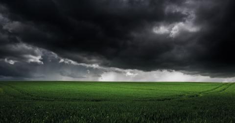 Misslyckas ledarna att enas på klimattoppmötet i Paris väntar med största sannolikhet ett århundrade av förvärrande stormar, fler och värre översvämningar, ökenspridning, torka och svält, menar debattörerna från Grön Ungdom Malmö. Bild: Richard Walker/CC BY 2.0