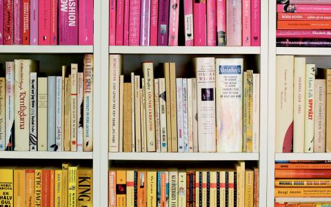 Många är nedslående över ett övervägande resultat av manliga författare i bokhyllan. Bild: Pontus Lundahl/TT