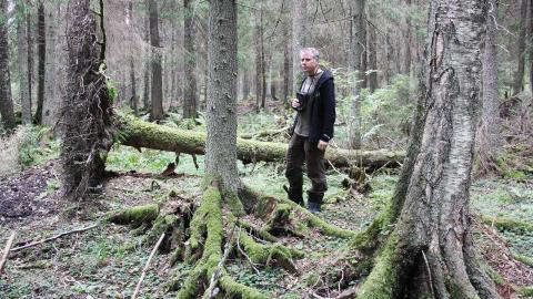 """Robert Svensson ser flera anledningar till att kunskapen om den hotade skogen är så låg, både bland politiker och allmänhet. """"Färre människor lever på landsbygden i dag och har inte kunskap om vad en skog är.  Bild: Anna Mi Skoog"""