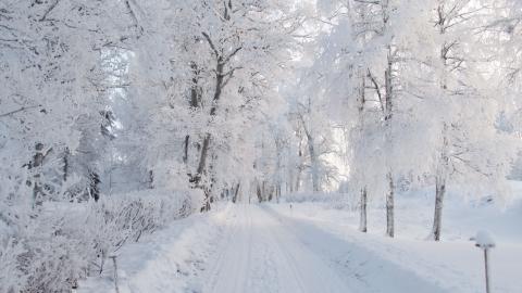 Ett snötäckt Stadra är den ultimata vinterbilden när Stadra teater bjuder in till en kväll med Lars Forssell.  Bild: Magnus Wetterholm