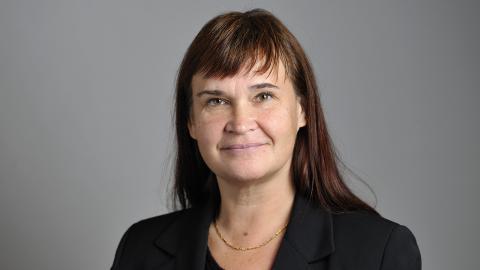 Annika Lillemets (MP). Bild: Henrik Montgomery/TT