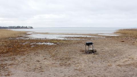 Badstranden Tingsbröten i Svärtinge har fått ett nytt utseende som följd av Glans låga vattennivå. Före torkan nådde vattnet ett 30-tal meter närmre land än nu.  Bild: Lisa Karlsson