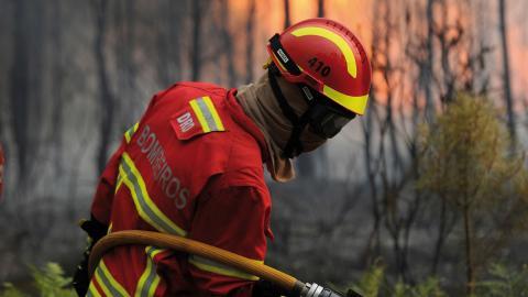Bild: Paulo Duarte/AP