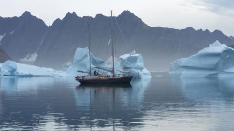 Ankrad bland isberg på Grönlands östkust.  Bild: Privat