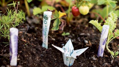 """""""Det saknas idag en bredare diskussion om hur samhället kan agera för att hantera utebliven tillväxt"""", skriver debattören. Bild: Pontus Lundahl/TT"""
