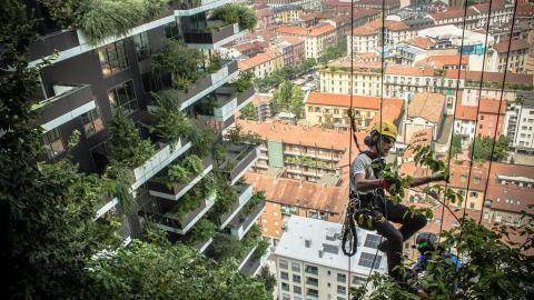 Även om Göteborg kanske inte satsar på vertikala skogar som den här i Milano, så måste byggnationer ta hänsyn till en grönytefaktor.  Bild: Stefano Boeri Architetti