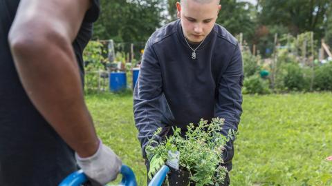 """I trädgården. Samuel Lindh föredrar de praktiska momenten på kursen. """"Jag gillar inte att sitta still och lyssna"""", säger han.  Bild: Elin Björklund"""