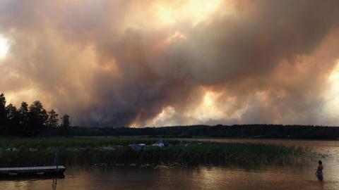 Rök stiger från skogsbranden som härjade i Västmanland 2014.  Bild: Patrik Wisell