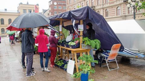 Trots regnet lockar Bondens egen marknad många som vill handla närodlat. Bild: Thomas Ekenberg