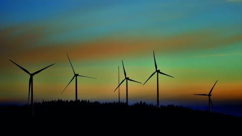 """""""Alla hushåll ska ges möjlighet att ha egenägd förnybar elproduktion, antingen i form av medlemskap i vindkraftkooperativ eller med egna solceller!""""   Bild: Henrik Montgomery/TT"""