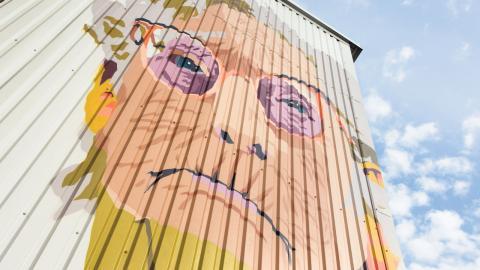 På många ställen på Ringön finns målad konstgraffiti, något som dock inte uppskattas av Mats Gotenius. Foto: Christopher Kullenberg Rothvall