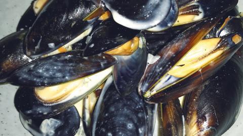 Blåmusslorna med ingefära, sour ale, örteroch grytbröd, är ordentligt gräddiga och av utmärkt kvalitet.  Bild: Matpatrullen