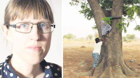 Två kvinnor i Burkina Faso hjälper varandra att klättra upp i ett néré-träd för att plocka frukt. Bild: Lisa Westholm