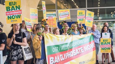 """Förra året slog Världshälsoorganisationens cancerpanel fast att glyfosat """"sannolikt"""" är cancerframkallande. Bild: Geert Vanden Wijngaert/AP"""