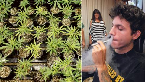 Flera länder i världen har legaliserat cannabis för medicinskt bruk. Personerna i bild är inte intervjuade i artikeln. Bild: Ricardo Arduengo/AP/TT / Nick Ut/AP/TT