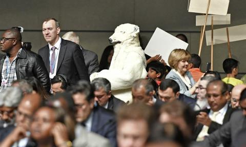 En isbjörn går omkring bland delegaterna på klimatmötet. Bild: TT