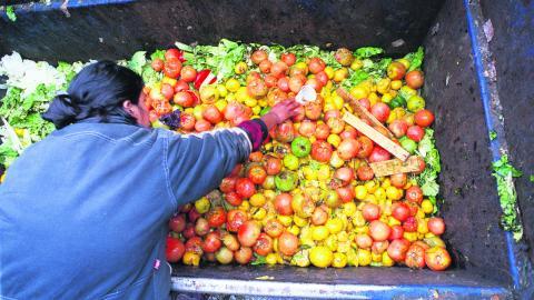Enligt FN kastas nästan lika mycket mat bort i världens rika länder årligen som all den mat som produceras i Afrika söder om Sahara. BILD TT