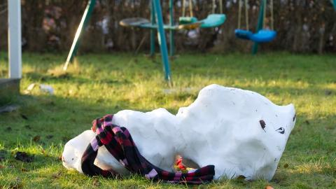 Antalet dagar med ett  utbrett snötäcke kommer  att minska kraftigt. Bild: Fredrik Sandberg / TT
