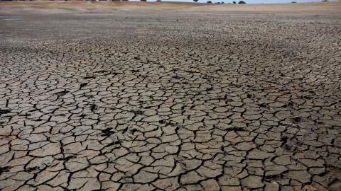 Naturkatastrofer som torka, översvämningar eller stormar är inte bara problematiska i sig utan riskerar även påverka näringslivet, enligt  Michael Wilkins, chef för hållbara investeringar vid S&P Global Ratings. Bild: Armando Franca/AP