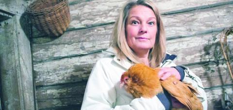 Yvonne Norman Håkansson har länge velat ha egna höns, för äggens skull, men främst för att hon inte tycker att det känns bra med äggfabriker där hon inte vet hur djuren har det. Bild: JOHANNA LINDQVIST
