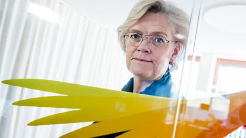 Carola Lemne, vd för Svenskt Näringsliv. Foto: Lars Pehrson / SVD / TT