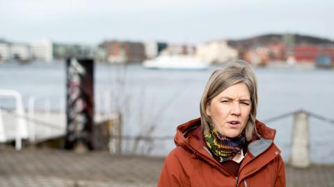 I förra veckan presenterade miljöminister Karolina Skog (MP) och regeringen en nationell strategi för klimatanpassning. Men den får nu kritik för hur det ska lösas finansiellt.  Bild: Björn Larsson Rosvall/TT