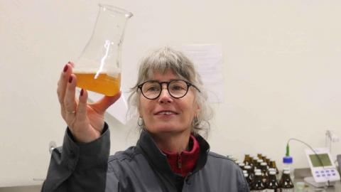 Nan Albertson berättar att hon nästan började gråta av glädje när hon gjorde sina första plattor för att testa bakterekulturer i öl. Foto: Patrik Persson