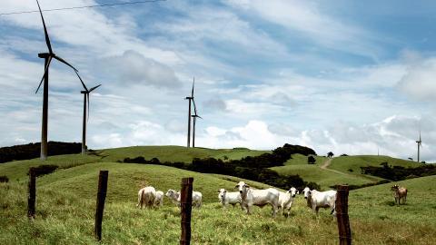 Vindkraft i Costa Rica.