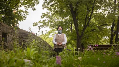 Skogen har stor betydelse för sydkoreaner. I städer som Seoul besöker människor parker och urbana skogar. Bild: Jonas Gratzer