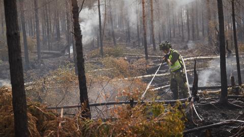 Räddningstjänsten och frivilliga gör ett otroligt arbete med att bekämpa skogsbränderna, menar debattören. Bilden är från branden nordväst om Oskarshamn den 3 juli.  Bild: Andreas Hillergren/TT