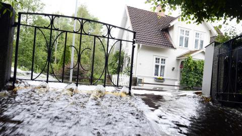 I stället för att ägna resurser åt militära övningar med Nato borde Sverige prioritera kampen mot naturkatastrofer, skriver debattören.   Bild: Mikael Fritzon/TT