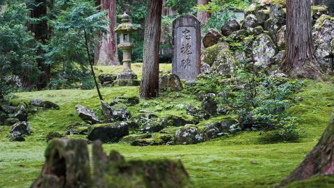 För japanerna har naturen varit en länk till det gudomliga och livet.  Bild: Henrik Bonnevier