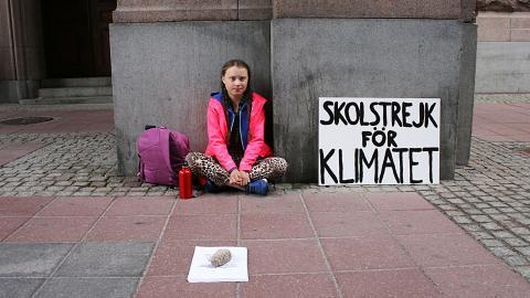 Greta Thunberg, 15, strejkar för klimatet fram till riksdagsvalet. Bild: Maria Holm