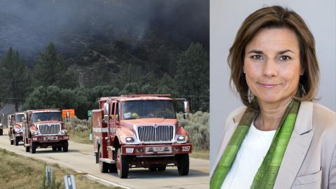 26 juli. Skogsbrand i Calif, Kalifornien.  Bild: Marcio Jose Sanchez/AP/TT