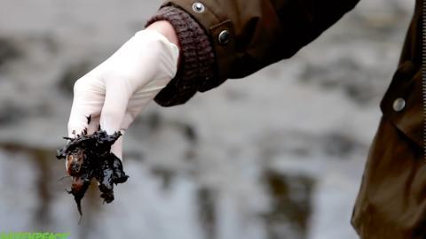 I en film från Greenpeace visas vattendrag och mark dränkt i olja. Från luften blänker det svart mellan granarna. Platsen är Nefteyuganskt i västra Sibirien där ryska oljebolaget Rosneft håller till.