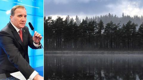 Miljöorganisationer hittar både ljuspunkter och mörker i uppgörelsen mellan S, MP, C och L. Foto: Jessica Gow / TT och Fredrik Sandberg/TT