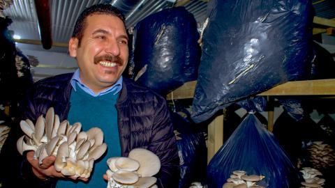 Almahdi Almohamed har jobbat hela sitt yrkesliv som grönsakshandlare och i Syrien var han nästan självförsörjande.