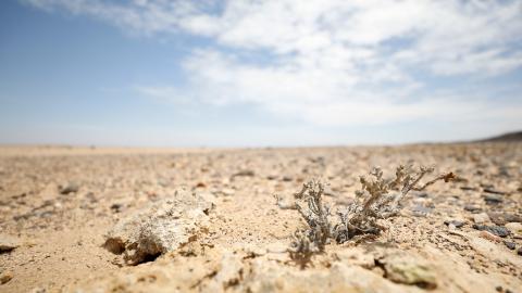 FN:s klimatpanel IPCC varnar för att extrema väderhändelser som torka kan bli betydligt allvarligare om den globala uppvärmningen överskrider 1,5 grader Celsius.  Bild: JPS