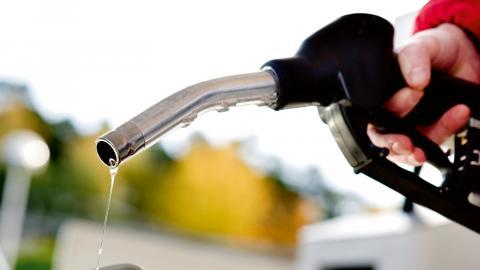 Det finns många problem med biobränslen, tycker skribenterna. Bild: Pontus Lundahl/TT