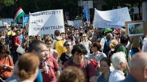 Protestgruppen Akademianställdas Forum har marscherat mot Orbánregeringens planer under hela våren.  Bilder: Akademianställdas Forum, MTA