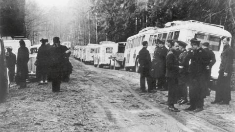 De vita bussarna förde folk till tryggheten i Sverige.  Bild: TT