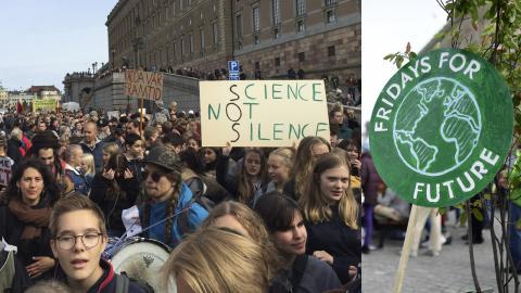 Demonstration vid Mynttorget i Stockholm. Bild: Gustav Gelin / Stina Stjernkvist/TT