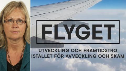 LiseLotte Olsson (V) / Skärmdump från filmen. Bild: Riksdagen / Skärmdump