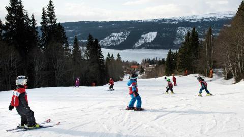 Skidskola för barn i Åre.  Foto: Pontus Lundahl / TT